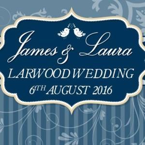James & Laura's Wedding