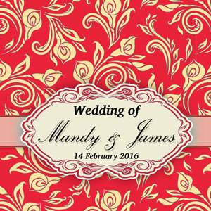 Mandy & James Wedding